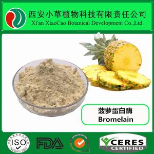 菠蘿蛋白酶  鳳梨酵素 菠蘿酵素   規格定制  廠家現貨供應
