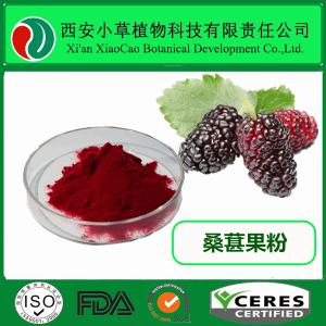 桑葚果粉 完全水溶  廠家定制  現貨供應  Mulberry Fruit Extract