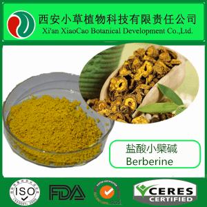 盐酸小檗碱 98% 黄连素  黄连提取物  可定制