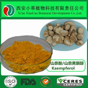 山奈酚 98% 山柰素 山柰黄酮醇 天然山奈根茎提取 可定制
