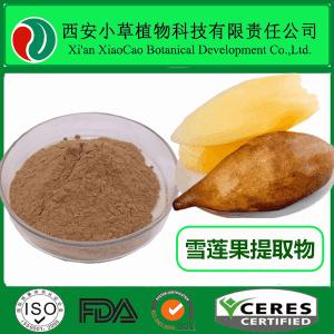 雪蓮果提取物 菊薯提取物 比例提取物  廠家現貨供應  規格定制