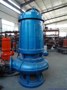小型潜水排污泵  操作方便的自动启停污水泵