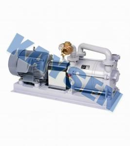 进口水环真空泵(德国进口)真空泵 产品图片