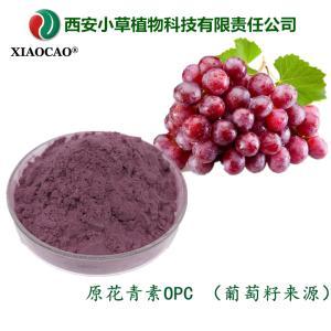 原花青素 OPC  葡萄籽原花青素  葡萄籽提取物  規格定制  廠家現貨