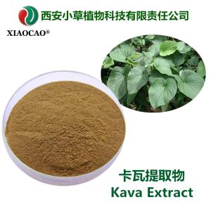 卡瓦提取物  Kava Extract  比例提取物  規格定制