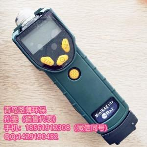 voc检测仪工作原理  泵吸式VOC检测仪PGM7300 产品图片