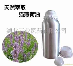 供应猫薄荷油 蒸馏萃取猫薄荷精油 产品图片