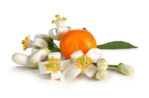 橙花香精 日化日用