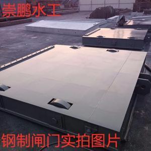 平面钢制闸门|南宁pm平面钢闸门型号|钢闸门厂家