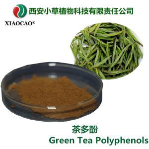 专业生产茶多酚 绿茶提取物 天然提取 规格可定制