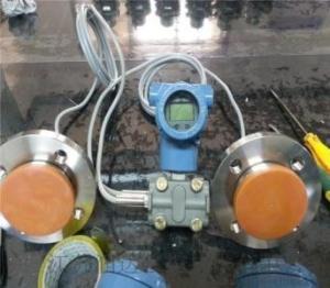 双法兰液位变送器
