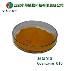 供应出口级辅酶Q10 泛醌10 Coenzyme Q10 量大从优